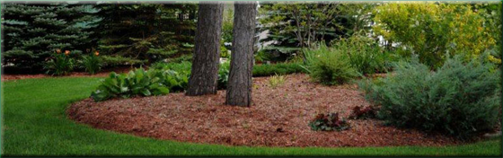 North Bay and Area Turf King Lawn Maintenance